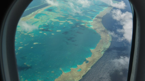 """Climate change: Australia's Great Barrier Reef in """"critical"""" condition for the first time, report says"""