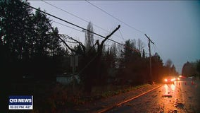 Hundreds without power in Lacey all day due to wind damage