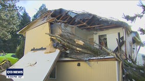 Tacoma woman recovering after tree crashes through bedroom roof during windstorm