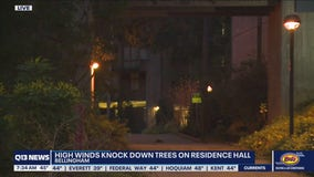 High winds topple trees on Western Washington University residence hall