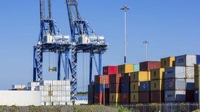 Washington farm exports hampered by cargo-container shortage