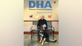 Future first dog Major Biden getting his own virtual 'Indoguration'