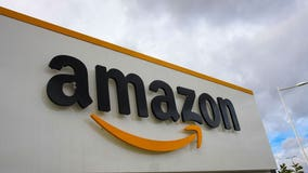 Amazon ordered to stop selling illegal pesticides online