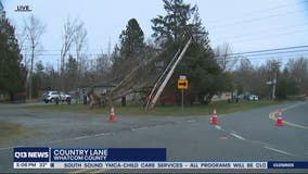 Strong winds, power outages arrive in North Sound