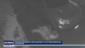 'That's somebody evil:' Search on for suspect randomly cutting brakes in south King County