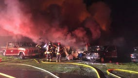 Man, four dogs killed in early morning fire in Covington