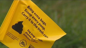 City of Kirkland to flag un-scooped pet waste at two parks