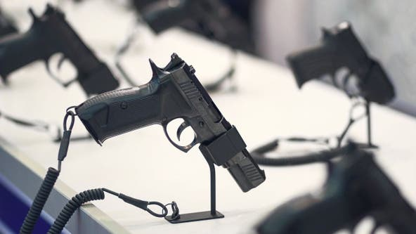 Appeals court: Edmonds can't enforce safe storage gun law