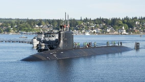 Navy works to quell bed bug infestation on elite submarine