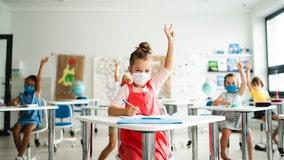 Healthy Living: Peace of mind amid allergy season