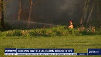 Crews battle Auburn brush fire