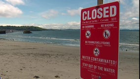 Another sewage spill closes water at Golden Gardens, portions of Kitsap County shorelines