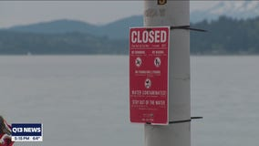 Portion of Alki Beach closed after sewage spill now reopened