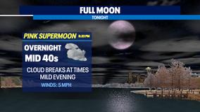 Happy Super Pink Moon!