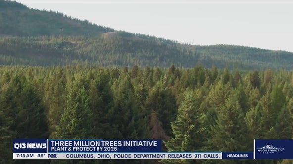 Three Million Trees initiative