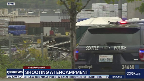 Shooting at South Seattle encampment