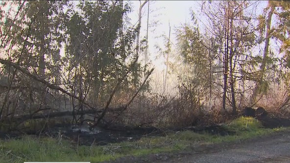 Fire crews work to contain Pierce County brush fire