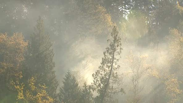 DNR head says new legislation will help battle more destructive wildfire seasons