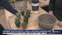 Gardening with Tim: Long lasting garden gifts for mom