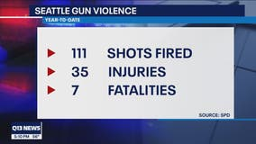 Gun violence on the rise in Seattle
