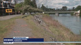Police recover 2 bodies found inside vehicle in Whatcom County river