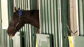 Preakness Stakes: Rombauer crosses the finish line first, denying Medina Spirit chance at Triple Crown