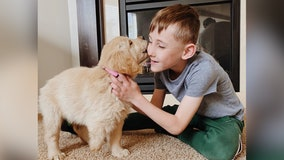 'Match made in heaven': Boy with prosthetic leg adopts dog with missing paw