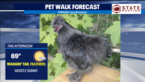 Mostly sunny & mild for 2 days