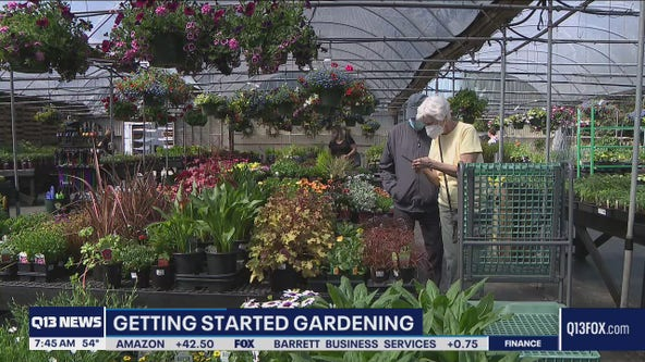 Gardening with Tim: Getting started in the garden