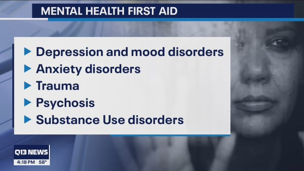 Renton Chamber of Commerce hosts 'mental health first aid' sessions for employers