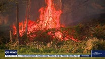 Extreme weather and wildfire risks