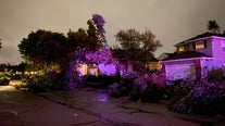 Tornado rips up homes, knocks down trees and power lines in Chicago suburbs of Naperville, Woodridge