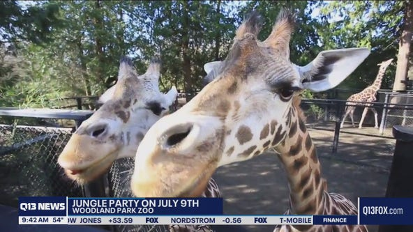Jungle Party at Woodland Park Zoo