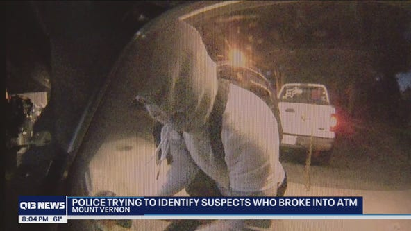 ID needed of ATM theft suspects described as 'quick and well-planned'
