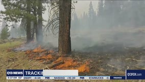 Bootleg Fire now the largest in the U.S. growing to over 400,000 acres