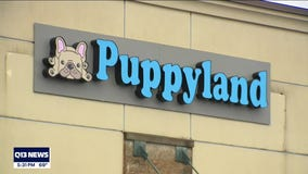 Renton pet store criticized over payment systems and puppy mills