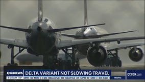 Delta variant not slowing travel