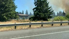 WSP: 6 brushfires along I-5 in Thurston County appear intentionally set
