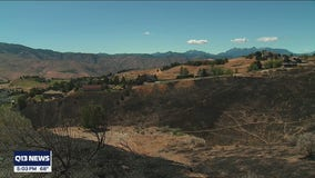 Red Apple Fire more than 50% contained, some evacuations downgraded
