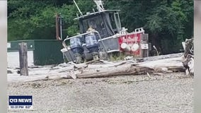 Convicted felon arrested for theft of towboat from Gig Harbor marina