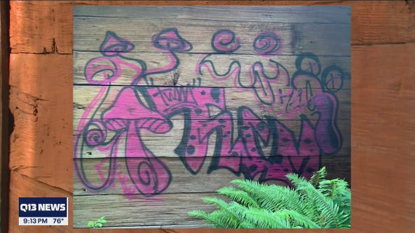140-year-old piece of Marysville history defaced