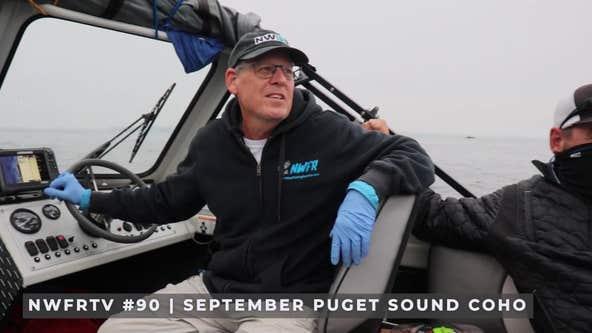 Preview: NWFRTV Episode 90 - Puget Sound Coho Salmon