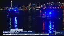 Search for missing diver underway