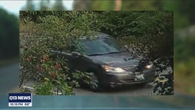 Investigators search for vehicle of interest in deadly hit and run of Maple Valley father