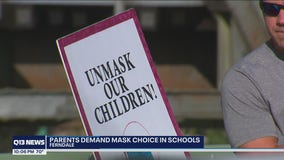 Dozens of parents rally against masks in schools in Ferndale
