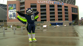 New COVID-19 restrictions in place for fans attending Seahawks' home opener