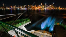 Photographer captures bioluminescent glow in wake of Seattle ferry