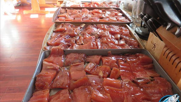Fishing Report of the Week: Pink Salmon in Snohomish River