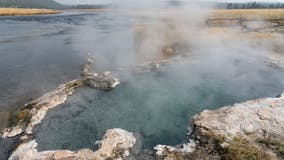 Woman burned rescuing her dog from Yellowstone hot spring