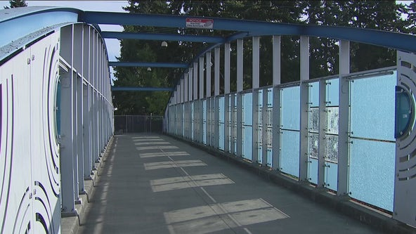 Vandal causes 'hundreds of thousands' in damages to art installations on Shoreline bridges